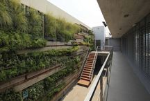 OVO BIOPHILIC / Biophilia is defined as the inherent human inclination to affiliate with nature. Biophilic design incorporates natural materials, natural light, vegetation, nature views and other experiences of the natural world into the modern built environment.