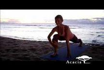 Shiva Reas prana flow yoga / Shiva Reas prana flow yoga