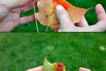 Flores / Crear flores