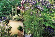 gardens / by Clara Sledd