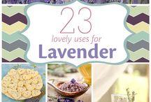 Lavender Love!!