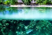 Dream Vacations / Places I would like to visit