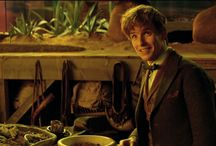 mov | fantastic beasts / [ my philosophy is that worrying means you suffer twice. ] +harry potter