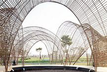 Mimi Hoang (nArchitecture) / American Architect