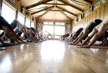 Maya Yoga Studio Maui / by Robindra Mohar