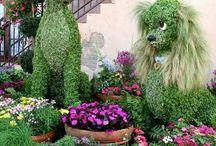 garden topiari