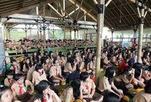 Pramuka / Kegiatan Pramuka di Citra Alam. Camping, Outbound, LDKS, MOS.