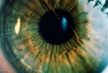 Photography With Eyes