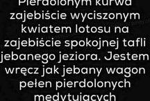 teksty xd