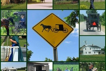 Amish Lifestyle / by Sandra Sizemore