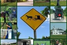 Amish Lifestyle / by Sandra Sizemore