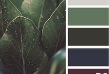 Colors / by Tasha M. Troy