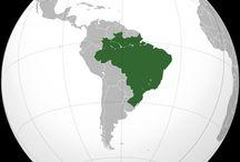 brazilian mule