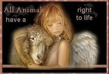 BEAUTIFUL SAYINGS FOR ADOPTION RESCUE AND FOSTER OF ALL ANIMALS. FEEL FREE TO SHARE YOUR PINS NO PICTURES PLEASE PIN THEM ON MY ADOPTION BOARDS / BEAUTIFUL SAYINGS AND QUOTES FOR ADOPTION RESCUE AND FOSTER OF ALL ANIMALS. NO PICTURES PLEASE PIN THEM ON MY ADOPTION BOARDS