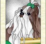 Hunde The Shih Tzu