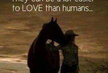Heste citater.