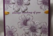 Flower shop Stamps