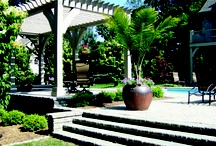 Outdoor Enclosures / Try using tropicals and other green elements to create a lush, private setting.