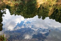 Photography - Reflections