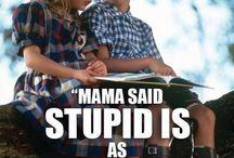 Stupid is stupid does och andra fina