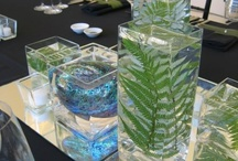 Weddings - Kiwiana / by Oh Buttercup Events