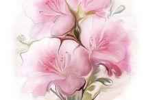 szines virág képek