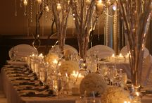 Wedding theme- Winter Wonderland / Nothing is 'too much' at a 'Winter Wonderland' wedding! Whether you go for a cool, silvery white theme or a cosy, warm light wintery theme, this is one you can really have fun and go to town with!