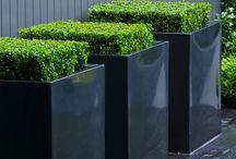 Minimal outdoor design