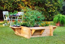 Garden Raised Beds / #plantera #garden #food #odla #mat #koloni #trädgård