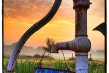 OLD WATER PUMPS / by Mary Mills