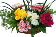 Send Flowers & Bouquets Online / Collection of flowers & Bouquets which you can gift your loved ones on special occasions