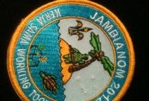 International Scouting