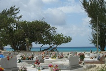 Cayman Activities / by Caribbean Club