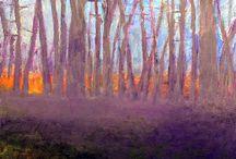 Wolf Khan paintings