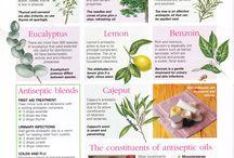 Herbal Antibiotics..