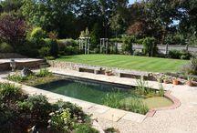Green plant pools