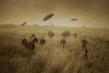 Umbrellas / I want to hold an umbrella over your umbrella - Gregory Sherl / by Laura E.