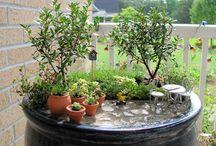 Jardinagem / Jardinagem