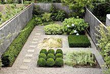 Landscape&Plant