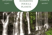 Devenir green, ecolo, bio