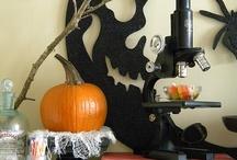 Halloween / by Aimee Porter