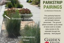 Water-wise Parkstrip Designs / Save money and water by designing your parkstrip to have amazing curb appeal while reducing the amount water needed to keep it beautiful.