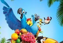 Rio / Rio the bird movie