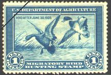 waterfowl stamps / by Micheal