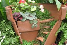 Fairy Garden Ideas / by Allison Thaut