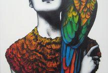 Perroquet - Parrots / Beautiful parrots Nature Color  Birds