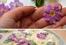 #Bartender - Edible Flower & Herb & E.T.C (with Cocktail)