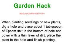 gardening  (: