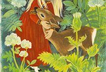 Illustrations- Felicitas Kuhn