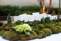 Table numbers & Place cards